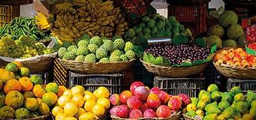 IESP recebe Feira Agroecológica no na próxima quarta-feira (16)